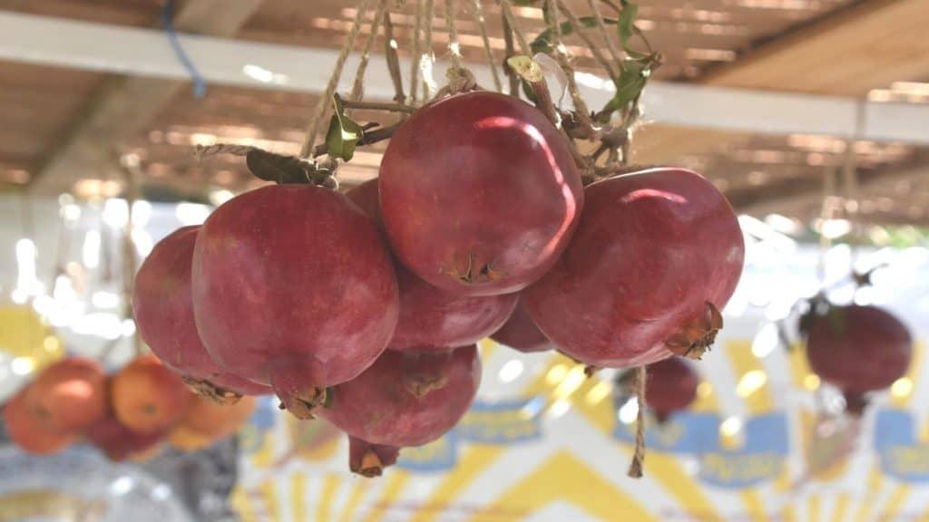 sukkah decorations ideas